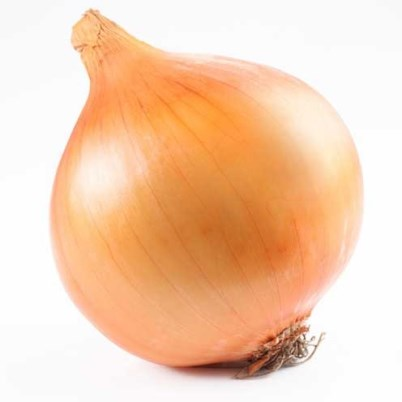 Organic Ft Bragg Onion Seeds - 20 Count