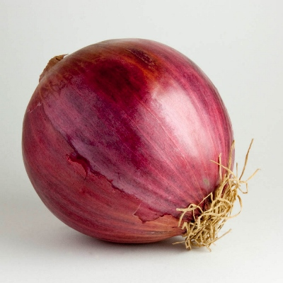 Organic Pinot Rouge Onion Seeds - 20 Count