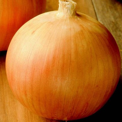 Organic Yellow Sweet Spanish Onion Seeds - 20 Count