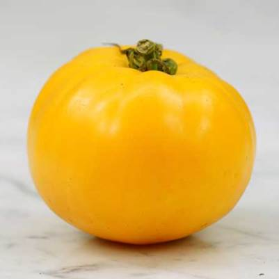 Organic Dads Sunset Orange Tomato Seeds - 20 Count
