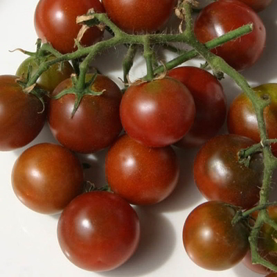 Organic Brown Berry Cherry Tomato Seeds - 20 Count