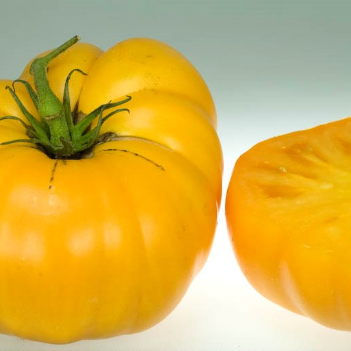 Organic Yellow Stuffer Tomato Seeds - 20 Count - Click Image to Close