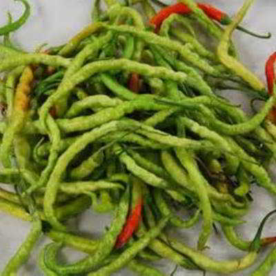 Organic Green Indian Jwala Pepper Seeds - 15 Count