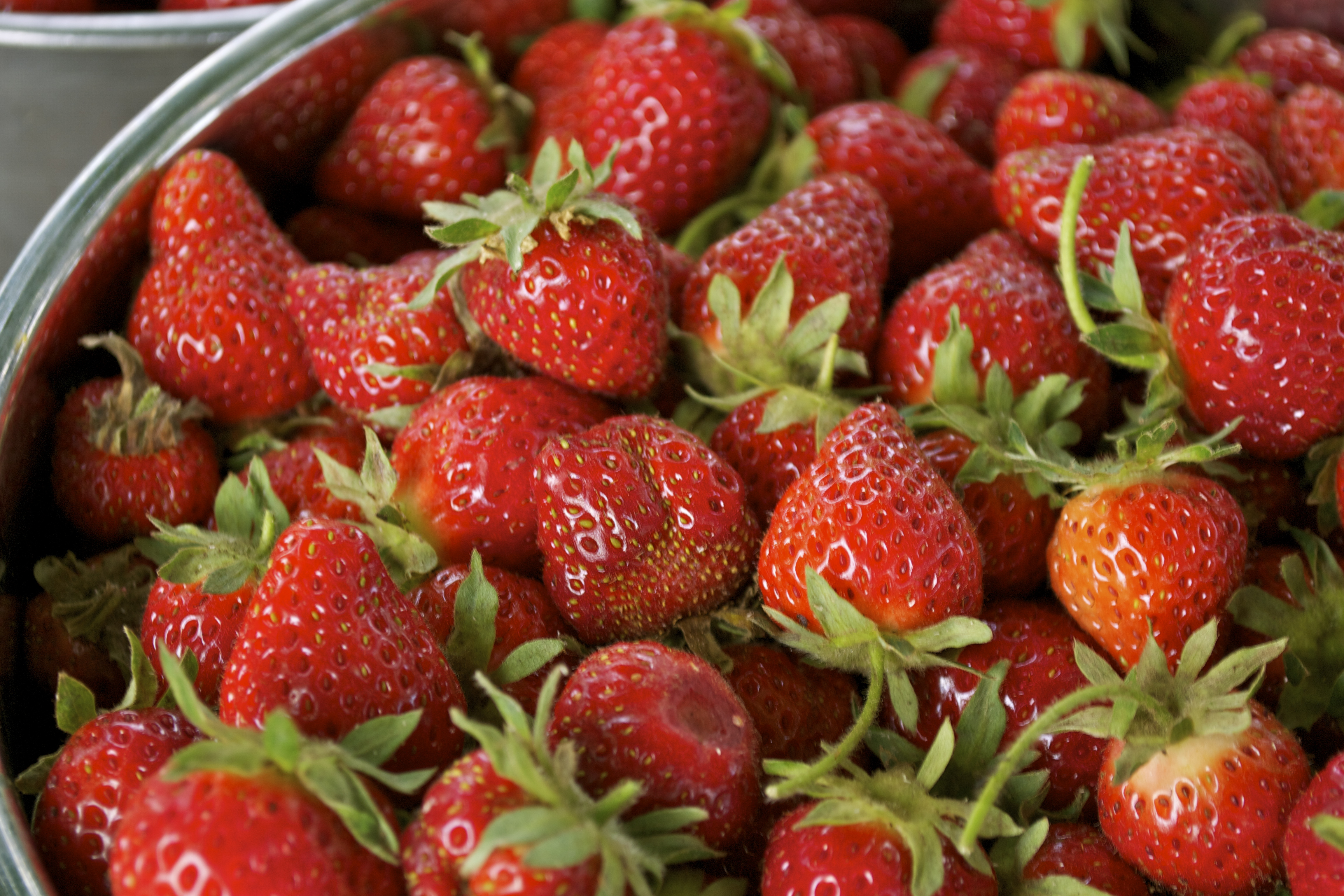 Organic Durban Strawberry Seeds - 25 Count